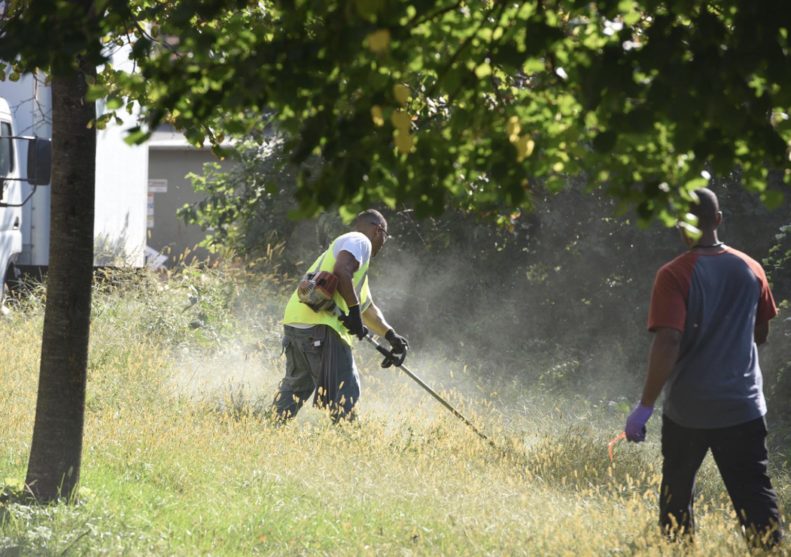 Men doing landscaping